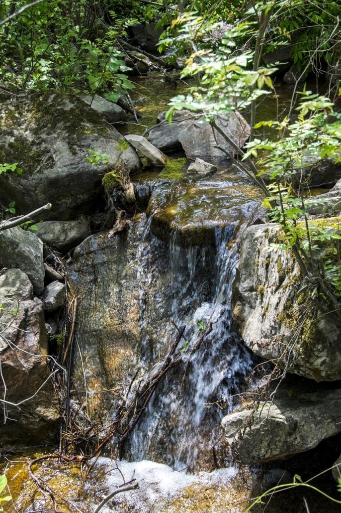 Eine Wasserquelle von der Wasser laut Trinkwasserverordnung entnommen wird